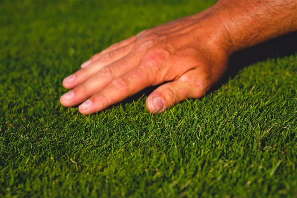 Jak vybrat robotickou sekačku - perfektní trávník